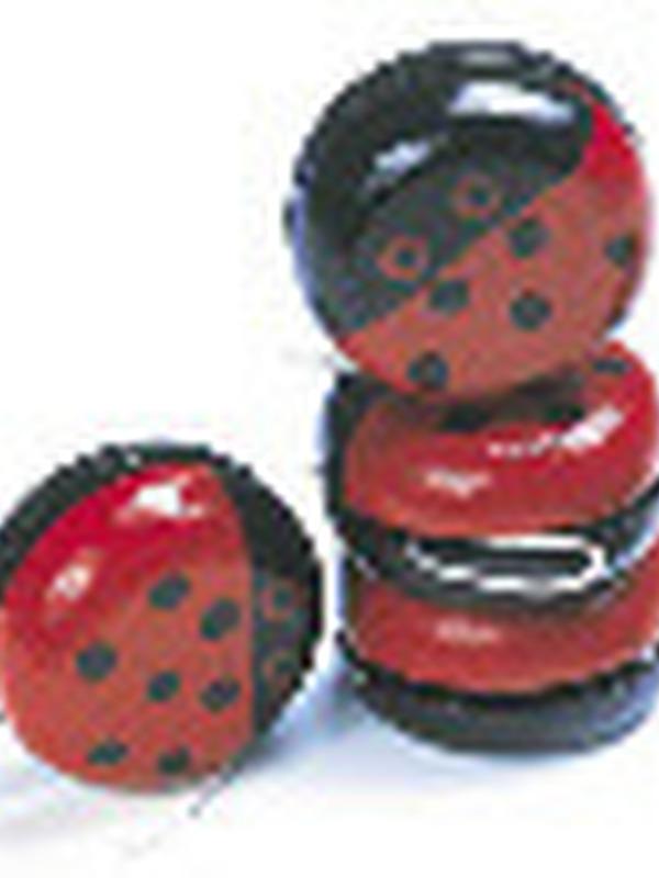 Lievenheersbeestje Yo-Yo prijs per stuk