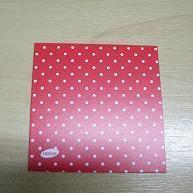 Naamkaartje Vierkant Rood + Witte Stippen