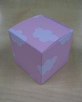 Karton Kubus Wolkenpatroon Roos