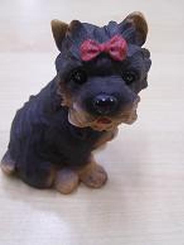 Hond met rood strikje