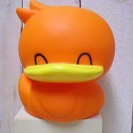 Eend Oranje